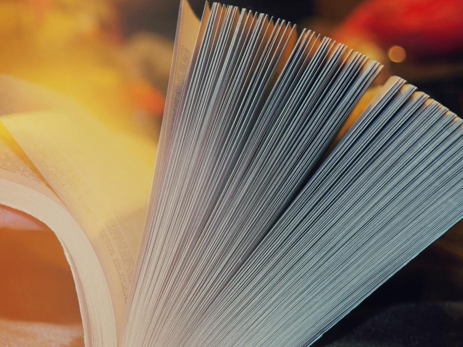 book_day-vangardist_2